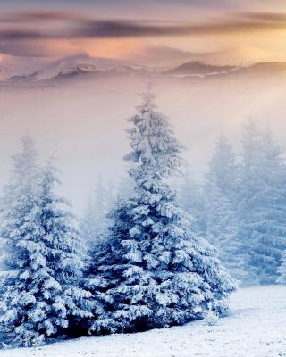 Winter Nature in Prisma Editor - Obrázkek zdarma pro Nokia C6