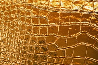 Golden Crocodile Leather Background for Android, iPhone and iPad