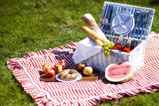 Summer Picnic Background for Android, iPhone and iPad