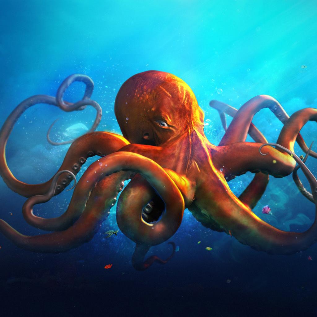 Octopus HD Wallpaper For IPad Mini
