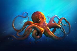 Octopus HD - Obrázkek zdarma pro 1440x900