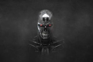 Terminator Endoskull - Obrázkek zdarma pro Android 480x800