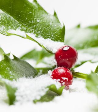 Frozen Cranberries - Obrázkek zdarma pro 768x1280