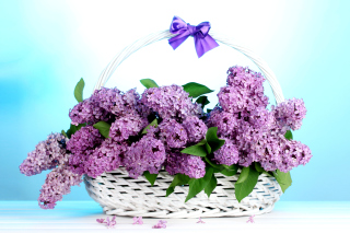 Baskets with lilac flowers Background for Android, iPhone and iPad
