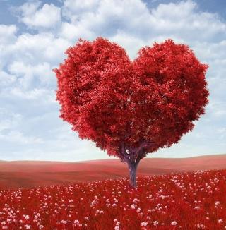 Heart Tree - Obrázkek zdarma pro iPad 3