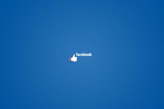 Facebook - Obrázkek zdarma pro Nokia Asha 205