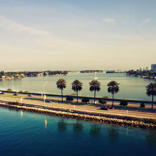 Miami Beach - Obrázkek zdarma pro 208x208
