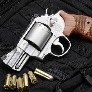 Smith & Wesson 629 - Obrázkek zdarma pro iPad mini