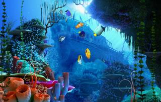 Aquarium Coral sfondi gratuiti per cellulari Android, iPhone, iPad e desktop