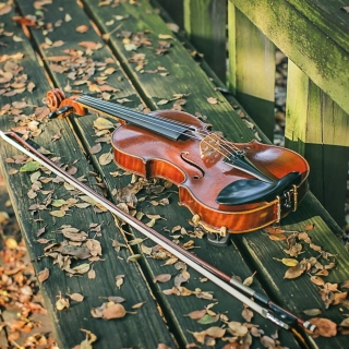 Violin on bench - Obrázkek zdarma pro iPad 2