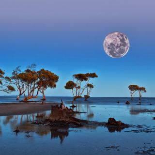 Moon Landscape in Namibia Safari - Obrázkek zdarma pro iPad mini 2