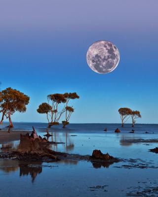 Moon Landscape in Namibia Safari - Obrázkek zdarma pro 360x640