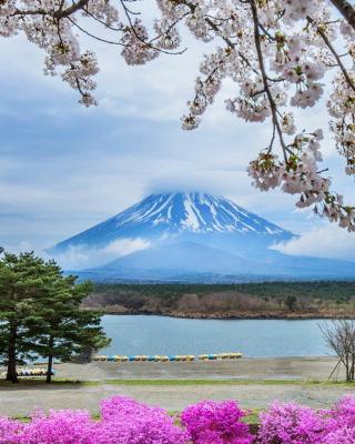 Spring in Japan - Obrázkek zdarma pro Nokia Lumia 1520