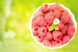 Free Little Daisy Among Red Raspberries Picture for Android, iPhone and iPad