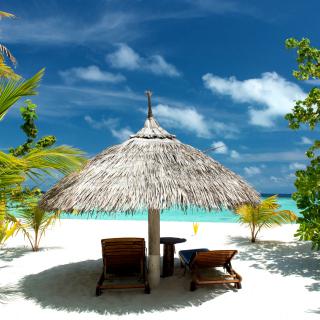 Luxury Beach on Bonaire - Obrázkek zdarma pro iPad