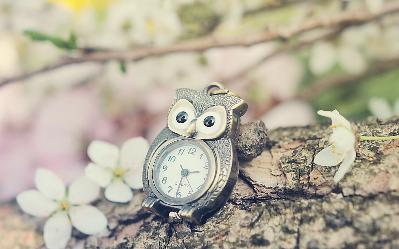 Vintage Owl Watch Wall...