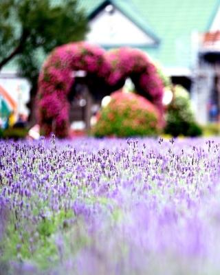 Purple Macro Flowers - Obrázkek zdarma pro Nokia X1-01