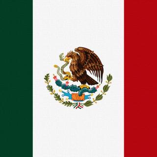 Flag Of Mexico - Obrázkek zdarma pro iPad Air
