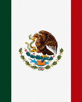 Flag Of Mexico - Obrázkek zdarma pro Nokia C-5 5MP