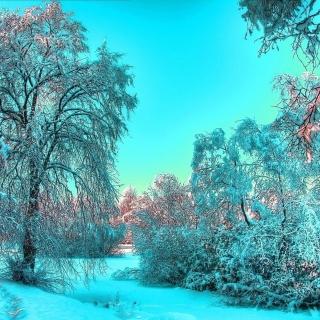 Last Month of Winter - Obrázkek zdarma pro 1024x1024