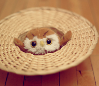 Cute Toy Owl - Obrázkek zdarma pro 320x320