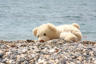 White Teddy Forgotten On Beach Wallpaper for Android, iPhone and iPad