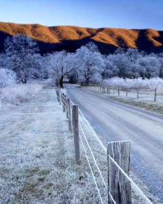 Canada Winter Landscape - Obrázkek zdarma pro 132x176