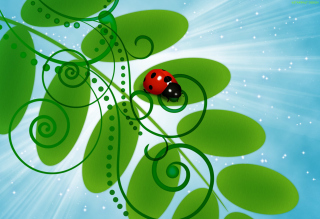 3D Ladybug Wallpaper for Android, iPhone and iPad