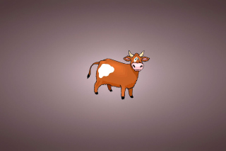 Funny Cow Picture for Android, iPhone and iPad