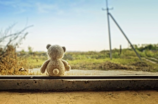Lonely Teddy Bear Background for Android, iPhone and iPad