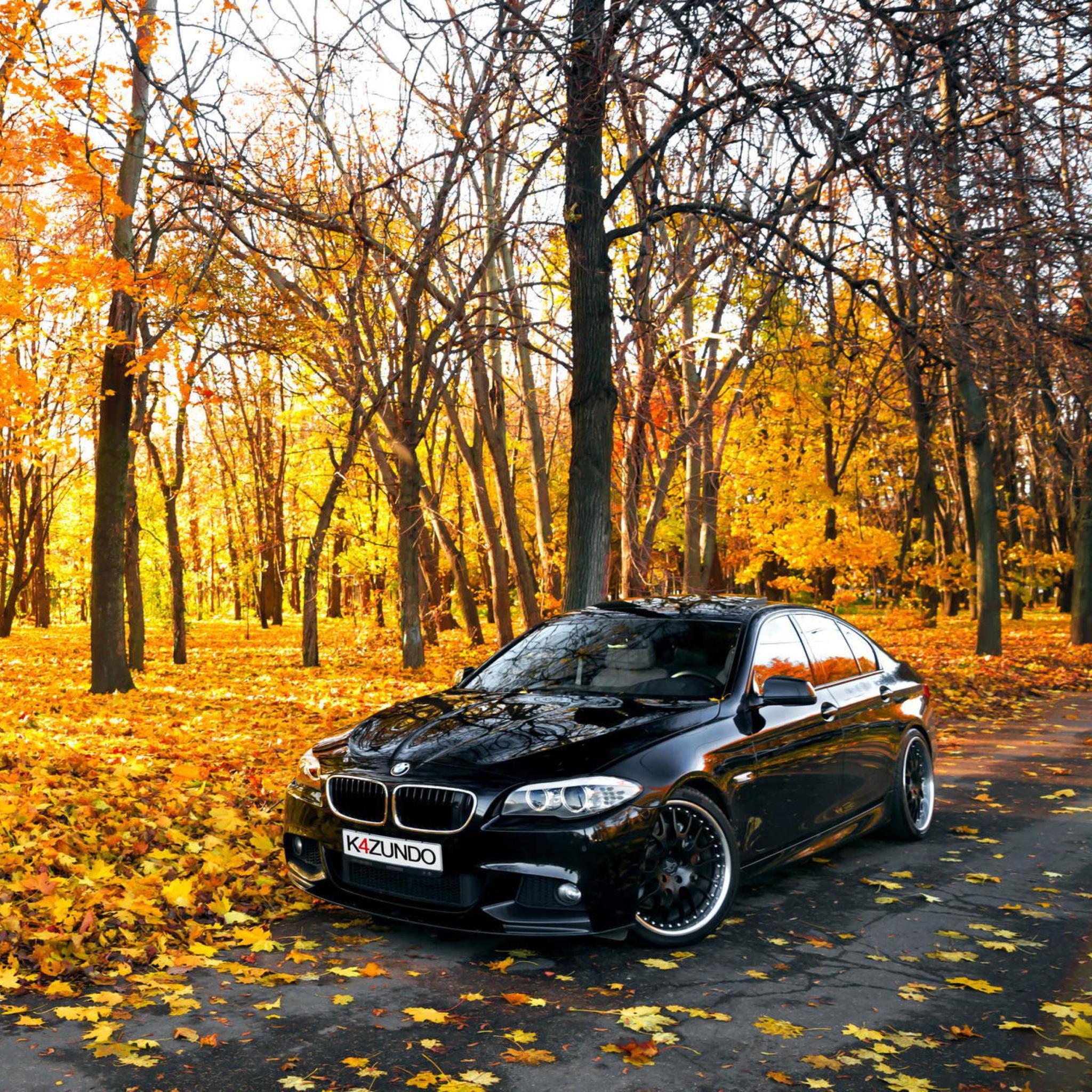 BMW M6 дорога осень  № 2445166  скачать