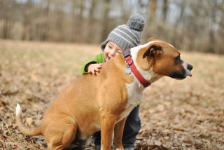 Child With His Dog Friend Background for Android, iPhone and iPad