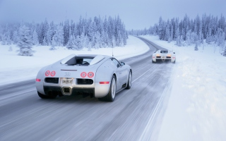 Bugatti Veyron In Winter Background for Android, iPhone and iPad