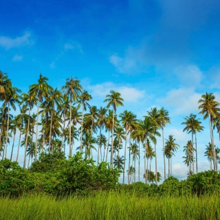 Malaysia, Bohey Dulang Island - Obrázkek zdarma pro 1024x1024