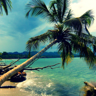 Good Place for Honeymoon In Mexico on Riviera Maya - Obrázkek zdarma pro iPad Air