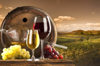 Free Grapes Wine Picture for Android, iPhone and iPad
