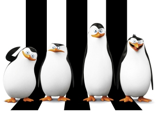 Penguins Madagascar Background for Android, iPhone and iPad
