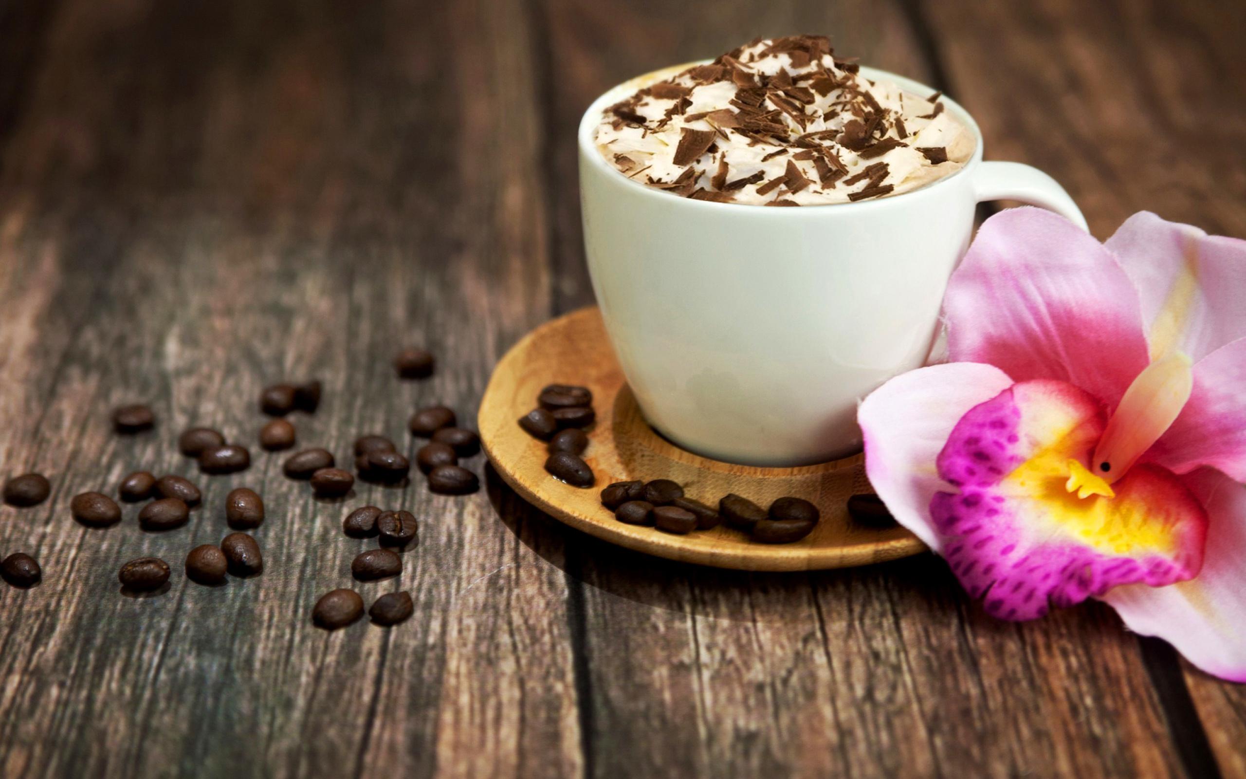 Обои на рабочий стол чашка кофе и шоколад