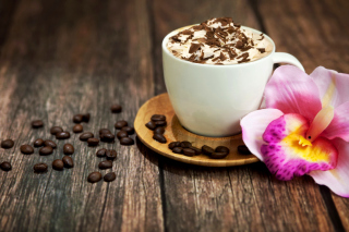 Free Coffee beans and flower Picture for Android, iPhone and iPad