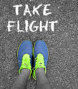 Take Flight - Obrázkek zdarma pro Nokia Asha 503