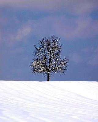 Tree And Snow - Obrázkek zdarma pro iPhone 6