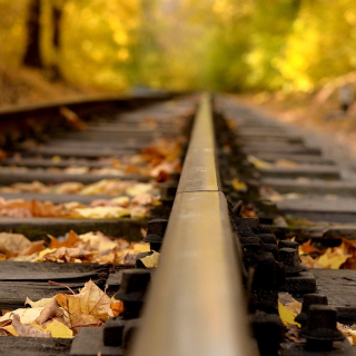 Railway tracks in autumn - Obrázkek zdarma pro iPad Air