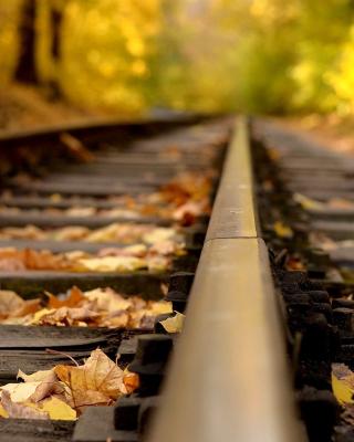 Railway tracks in autumn - Obrázkek zdarma pro Nokia Asha 502