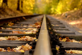 Railway tracks in autumn Background for Android, iPhone and iPad