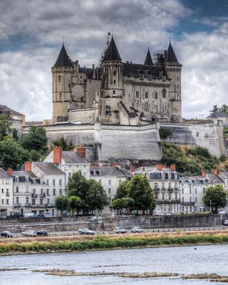 Saumur Castle on Loire - Obrázkek zdarma pro Nokia C2-00