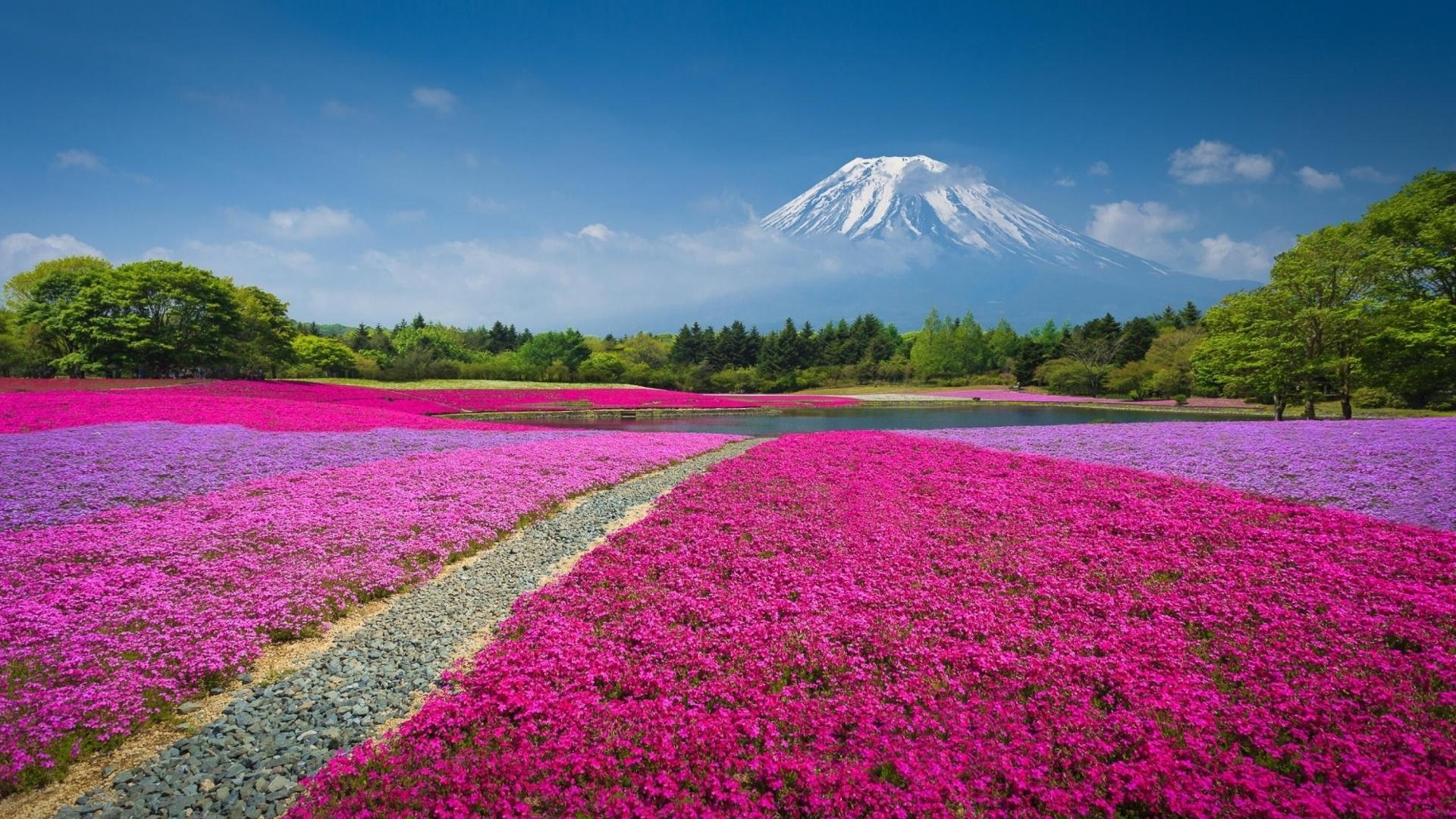 Japanese volcano in spring wallpaper for desktop 1920x1080 for Sfondi pc primavera