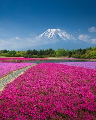 Japanese volcano in spring - Obrázkek zdarma pro Nokia Asha 308