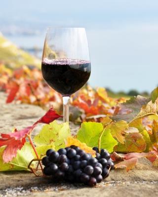 Wine Test in Vineyards - Obrázkek zdarma pro Nokia C2-00