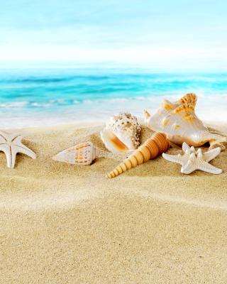 Seashells on Sand Beach - Obrázkek zdarma pro Nokia X2-02