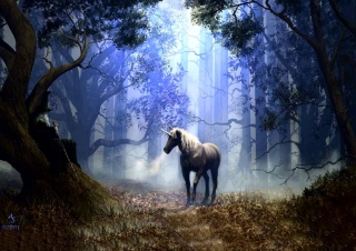 Fantasy Horse Background for Android, iPhone and iPad